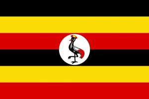 Uganda - Entwicklungsprogramm - Wiederaufforstung